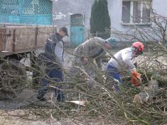 Hasičská brigáda - odstranění stromu